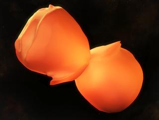 Eta Carinae Homunculus Nebula in 3D